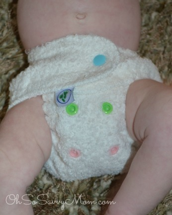 fitted diaper - cloth diaper