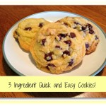 3 Ingredient Quick and Easy Cookies – Recipe