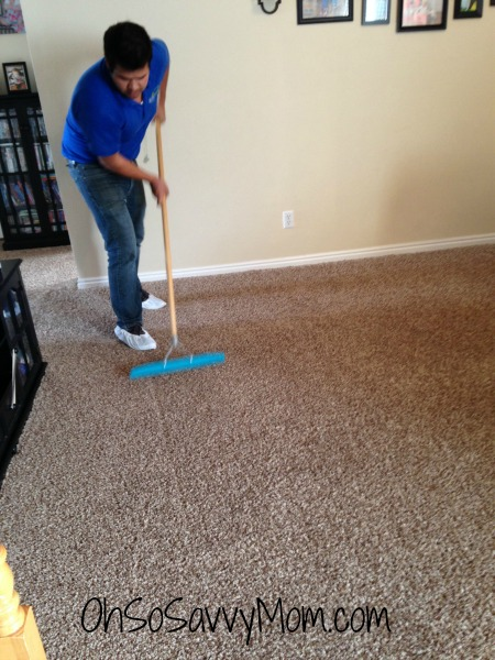 All Natural Carpet Cleaning In Utah From Ecocarpet