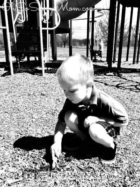 Little Brother at the park