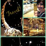 Perot Museum, travel, Dallas, Texas
