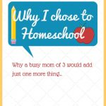 I Never Thought I Could Homeschool, But…