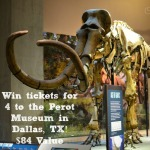 Discover, Learn, and Enjoy the Perot Museum in Dallas + Giveaway