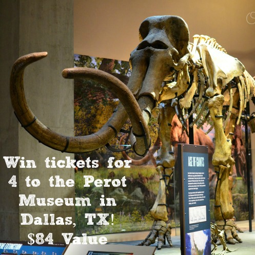 Perot Museum giveaway