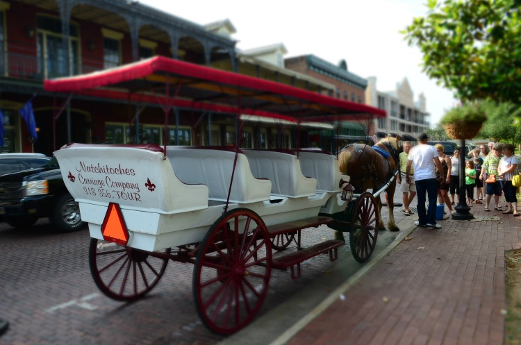 Natchitoches Carriage Tour