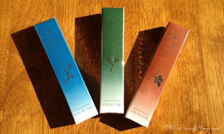 Lisa Hoffman scents