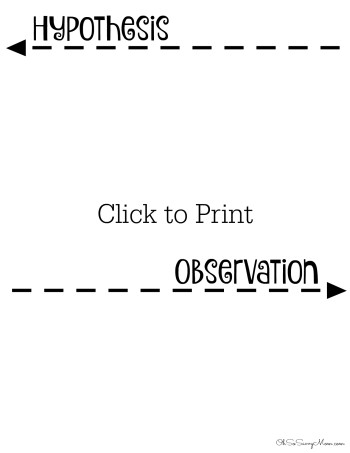 Hypothesis & Observation Worksheet sample