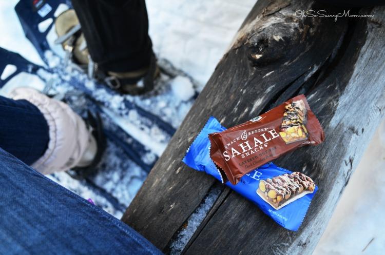 Sahale Snacks Layered Nut Bars
