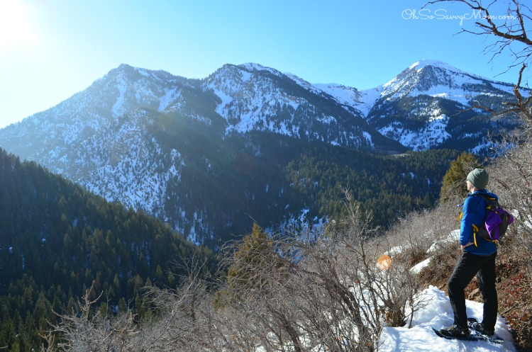 Snowshoeing in Utah County American Fork Canyon Tibble Fork trail