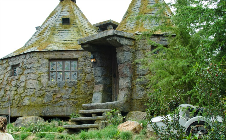 Hagrid's House Universal Studios Hollywood