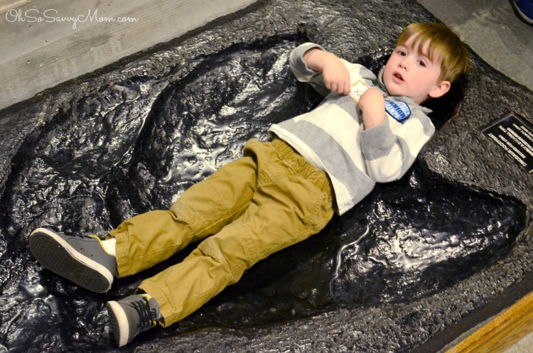 Toddler laying in Dinosaur Footprint