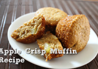 The NEW Boon SPAN and FORB MINI + Apple Crisp Muffin Recipe