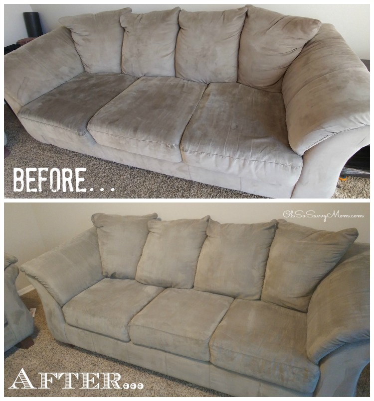 Tree Tunnel Carpet Cleaning Couch Cleaning Before and After