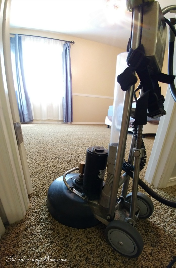 Tree Tunnel Carpet Cleaning Rotovac