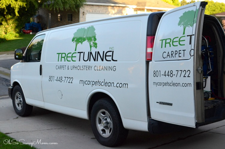 Tree Tunnel Carpet Cleaning Oh So Savvy Mom